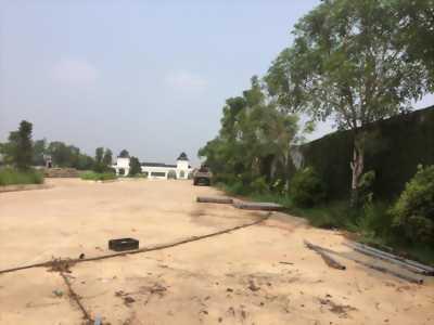 đất khu công nghiệp tân phú trung củ chi . tp hcm . 800 tr
