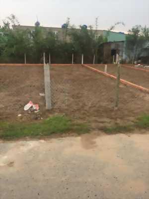Bán gấp lô đất Tân Thông Hội, Củ Chi, 90m2, SHR
