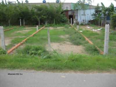 Bán đất Tân Phú Trung,CỦ CHI, 134m2, SHR,giá 790tr