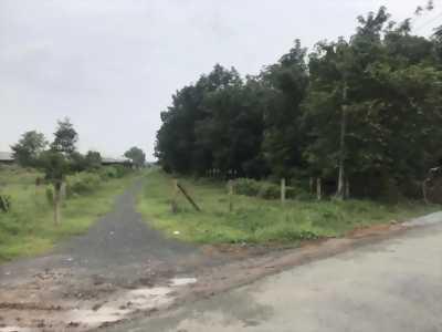 Chủ kẹt tiền nợ giang hồ cần bán 2 lô đất xã tân phú trung, huyện củ chi