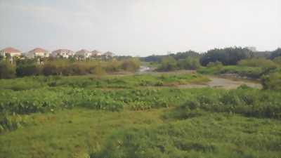 Chính chủ bán 02 lô đất phân lô dự án phố Chợ Lương Sơn
