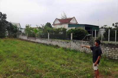 Bán đất xóm 12 Diễn An Nghệ An, giá cực rẻ
