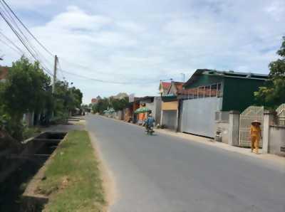 Bán đất đấu giá, chợ Tân Minh, Diễn Châu, Nghệ An