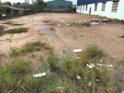 Cần bán gấp đất trên đường Bùi Văn Ngọ