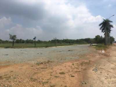 Cần Bán nhanh lô đất mặt tiền Tỉnh Lộ 10 gần cầu Bà Lát