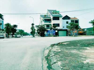 Đất Đô Thị trung tâm Trâu Quỳ, 132m2