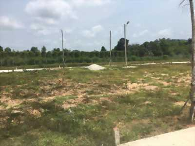 Bán đất trồng cây, đất thổ cư, Huyện Giồng Trôm, Bến Tre, giá 820 triệu