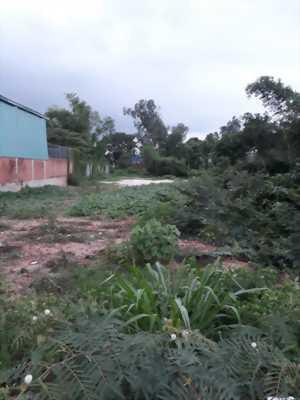 Thua banh cần sang lại vài lô đất ở Tây Ninh giá cực rẻ.