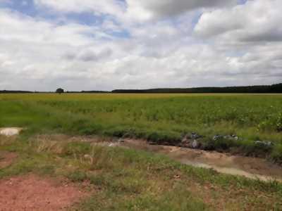 Chính chủ ra gấp vài lô đất gần ngã 4 nông trường