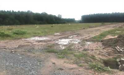 Bán đất Hòa Liên 4 đối lưng trục chính, giá 6,1 tr/m2