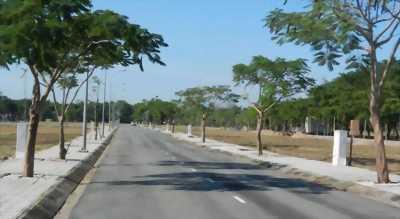 Bán đất thổ 100m2 đường Võ Thị Hồi, Hóc Môn, SHR