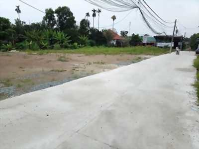 Đất Thổ Cư SHR Tân Hiệp Hóc Môn 90m²
