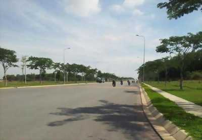 Bán 94ha đất cao su đang cạo đường DT, xã Tân Hưng, Hớn Quản, Bình Phước