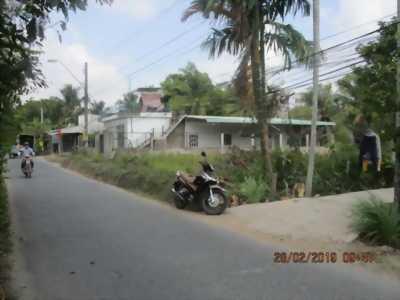 Đất mặt tiền đg Huyện 23.ấp Phú Thạnh phú Qưới Long Hồ TPVL
