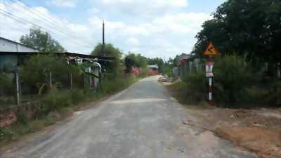 Bán đất ngay gần ủy ban xã Lộc An - Long Thành - Đồng Nai