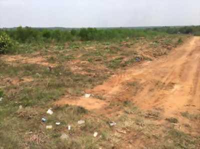 Bán đất mặt tiền tỉnh lộ 769, giá 650tr