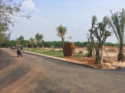 Cần tiền Tết bán gấp 500m2 đất Lộc An, Long Thành