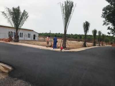 Cần tiền phải bán 125m2 đất Lộc An sân bay Long Thành
