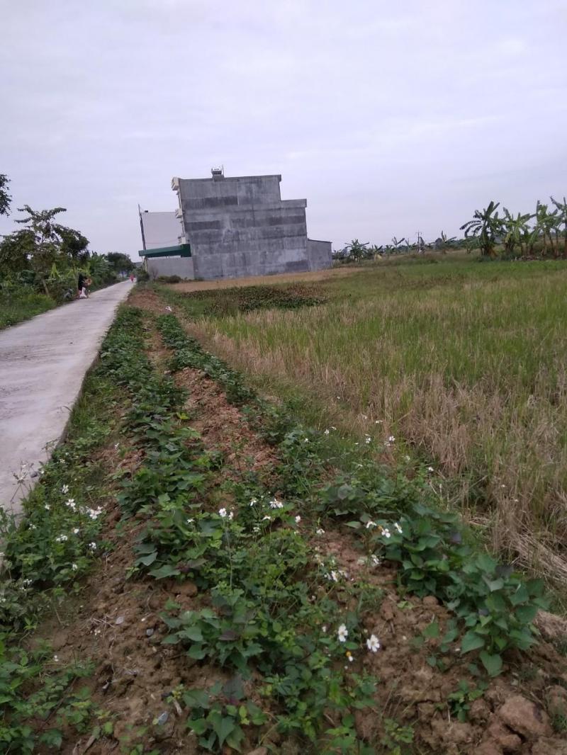 Bán lô đất tại Hồng Phong Nam Sách