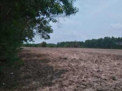 Đất bán trong khu công nghiệp Hiệp Phước, diện tích 4.963m2