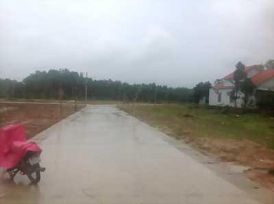 Bán đất nền dự án khu dân cư Phú Quốc Land