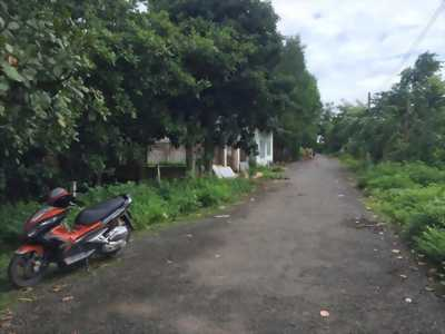 Thanh Lý Toàn Bộ Nhà Cửa Đất Tại Việt Nam Mỹ Xuân