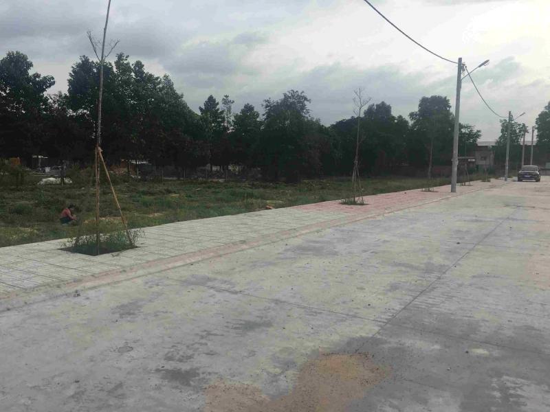 Bán đất mặt đường thôn Vũ , Cẩm Phúc, Cẩm Giàng, Hải Dương