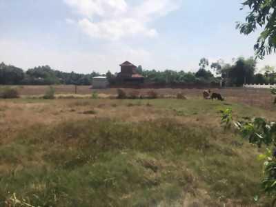 Chính chủ cần bán miếng đất tại phường Cộng Hòa