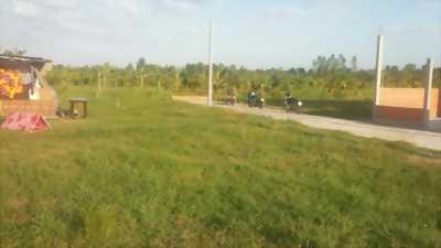 Bán đất Vườn dừa, xe hơi ra vào thoải mái