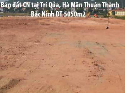 Cần bán gấp đất công nghiệp tại Thuận Thành Bắc Ninh