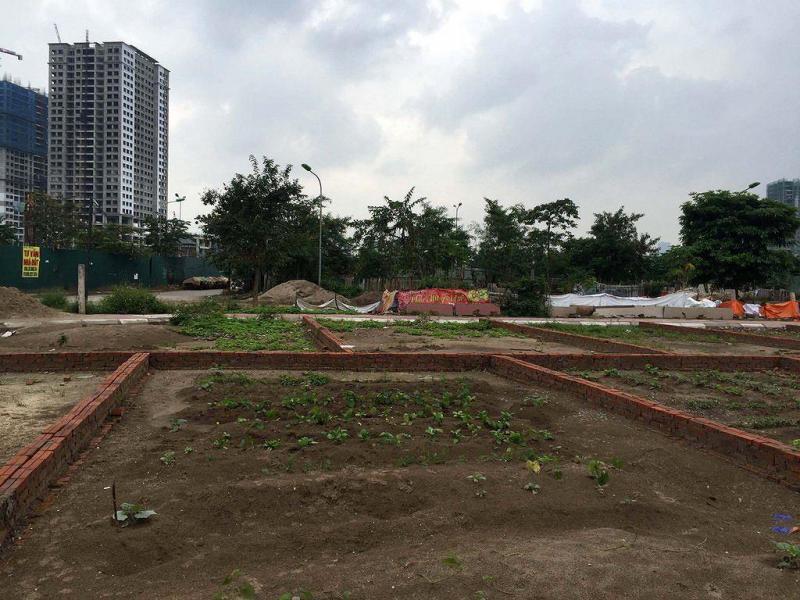 Bán mảnh đất 200m2 cuối đường Lương Khánh Thiện