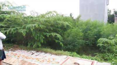 Chính chủ bán gấp lô A24 DA Hoàng Kim,đường 8 Lò lu,50 m2,SHR