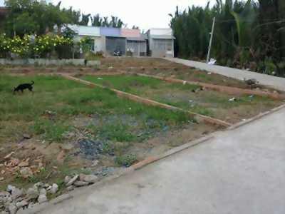 Đất nền quận 11 liên kề đầm sen giá 60trieu/m2.