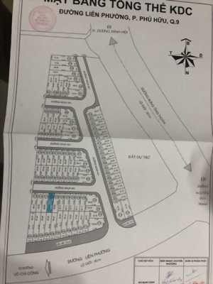 Cần bán 1 lô đất mặt tiền ở đường Liêng Phường quận 9