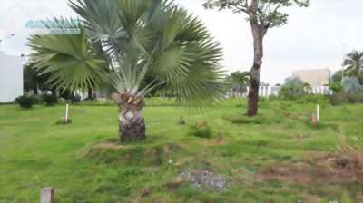 Bán đất quận 9, lô B04 Centana Mặt tiền đường Trường Lưu, phường Long Trường,143m2