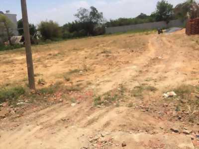 Chính chủ Bán một số lô đất KDC hiện hữu trường lưu quận 9