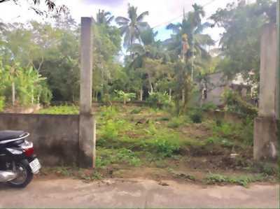 Bán đất hẻm 5 đường Bùi Hữu Nghĩa - DT 338m2