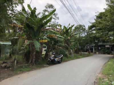 Bán nền mặt tiền đường Tạ Thị Phi - DT 174m2 - Hướng ĐB - Lộ 6m - Giá 2 tỷ 500 triệu - LH 0986184837 Sương