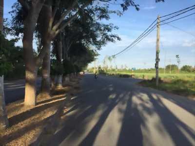 Bán nền Đường số 6 (Đường Nguyễn Thị Sáu) khu dân cư 586 - DT 125m2 - Giá 1 tỷ 650 triệu/nền - LG 30m - Hướng TB - LH 0986184837 Sương