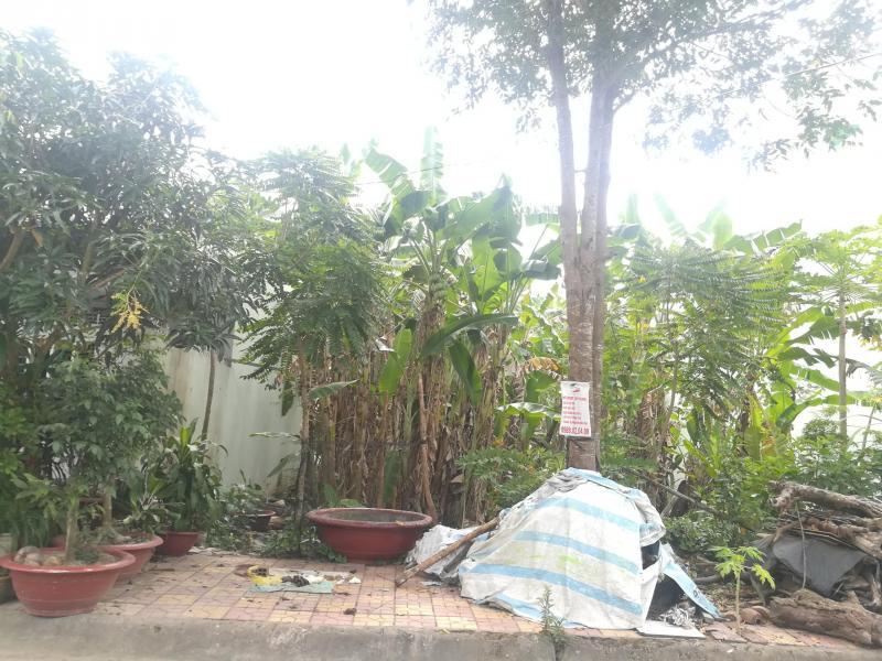 Bán nền đường số 10 (Lốc đầu tiên) khu dân cư Diệu Hiền - Cần Thơ - DT 99m2 - Hướng TB - Giá 1 tỷ 480 triệu - LH 0986184837 Sương