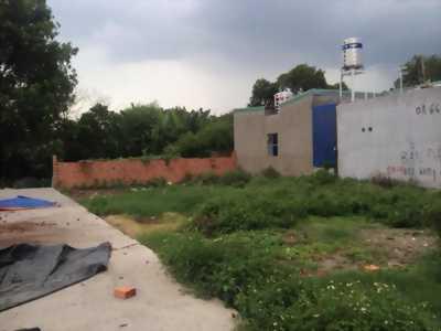 Bán đất gần sông Trà Quế,Hội An,C1-06,07,đường19m5