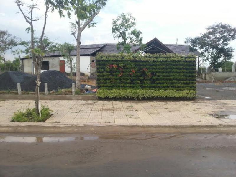 Bán đất khu đô thị Long Hưng view sông cao cấp, giá rẻ