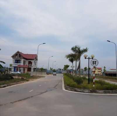 Vua của mọi Dự án tại Bãi Dài Cam Ranh