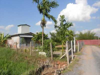 Đất vườn thị trấn Tân Sơn