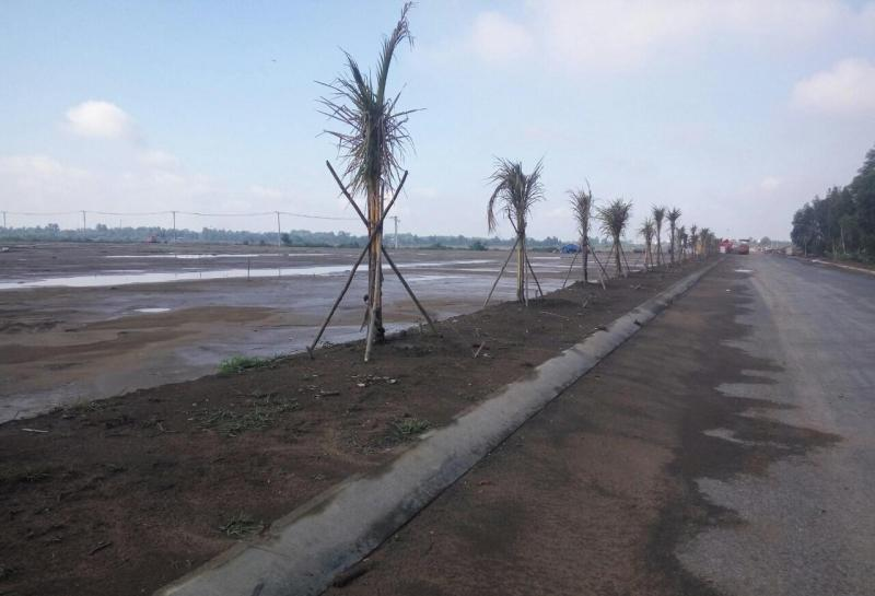 Đất mặt tiền DT704 huyện Khánh Hải Ninh Hải
