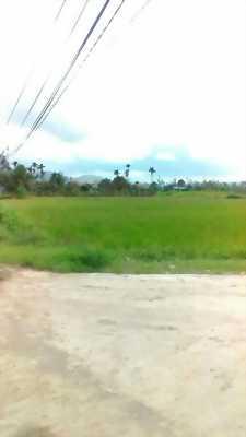 Bán lô đất-Xã Tân Khánh-Phú Bình-Thái Nguyên