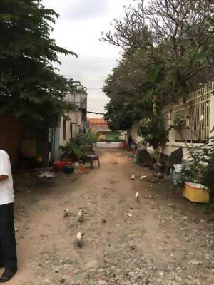 Bán đất phường chánh nghĩa đại lộ bình dương