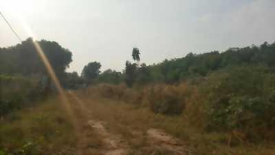 Bán 3909m2 đất xã Phú An, Bến Cát. Giá 850,000/m2