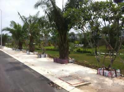 Bán đất mặt tiền đại lộ Hùng Vương, view sông Thị Tính, BD