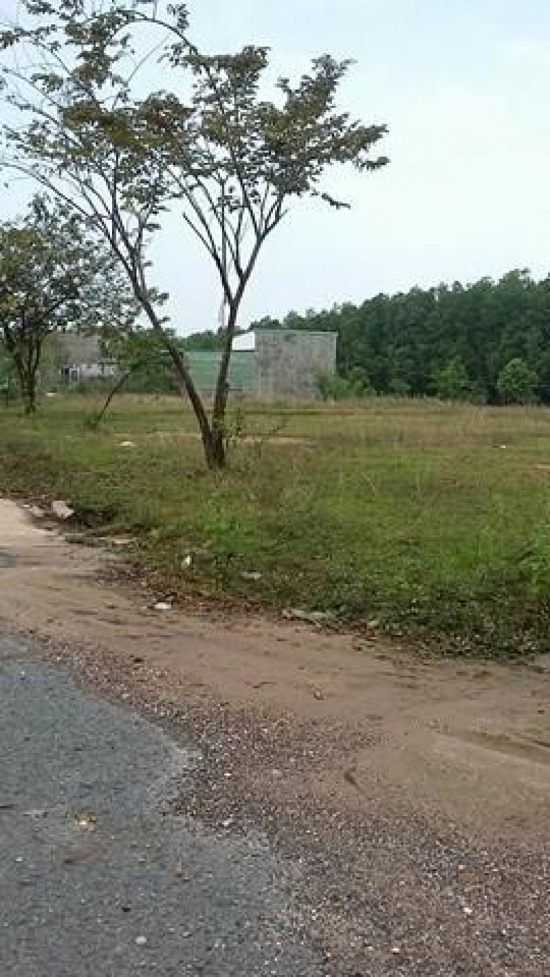 Cần tiền bán gấp lô đất MP4, gần 2 trường ĐH, KCN